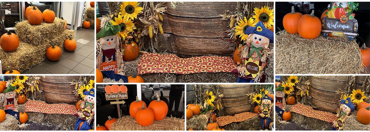 pumpkin promotion