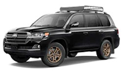 2020 Toyota Land-Cruiser trims